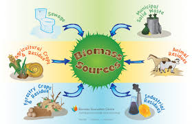 Sources of Biomass