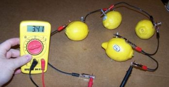 Light Up Your Life With Lemon Batteries