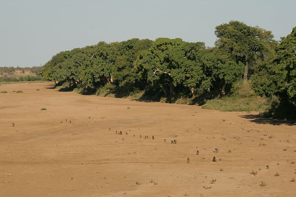dried river beds