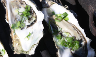 california oysters