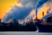 net carbon tax